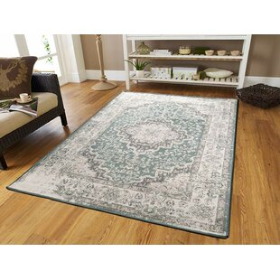 Schreiber Beige/Gray Indoor/Outdoor Area Rug