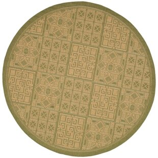 Short Light Green & Natural Indoor/Outdoor Area Rug