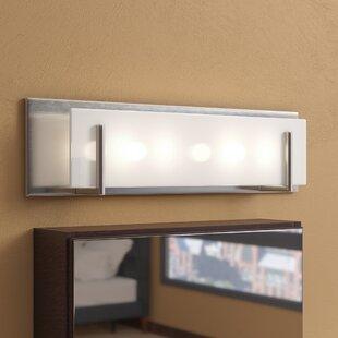 Chesney 4-Light Glass Shade Bath Bar