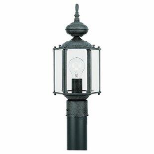 Bloomsbury Market 1-Light Lantern Head