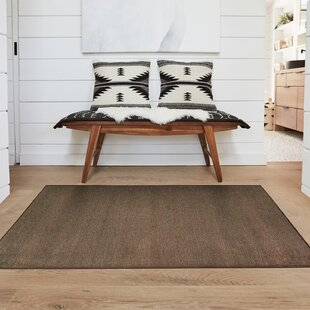 Stain Resistant Espresso Indoor/Outdoor Area Rug