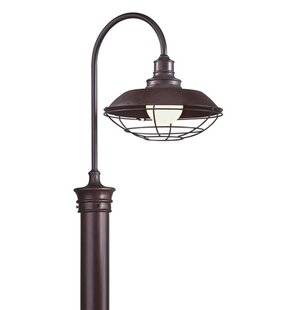 Theodore 1-Light Lantern Head in Old Rust by Darby Home Co