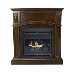 Shavon Natural Gas Fireplace by Darby Home Co