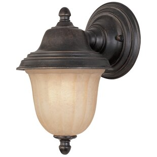 Best Reviews Teminot 1-Light Outdoor Sconce By Bloomsbury Market