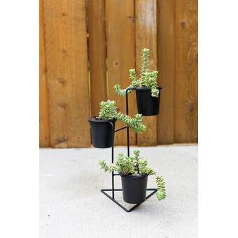 17 Stories Womble Powder Coated Metal Pot Planter Wayfair