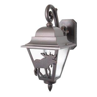 Best Penfield 1-Light Outdoor Wall Lantern By Alcott Hill