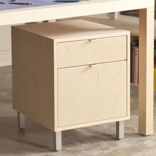 Southville 1-Drawer File Cabinet by Latitude Run
