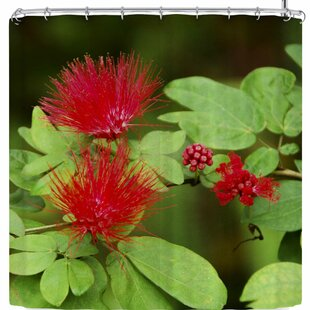Nickn Spikey Flower Single Shower Curtain