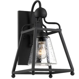 Darby Home Co Barnaby Outdoor Wall Lantern