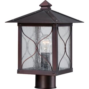 Dufresne Outdoor 1-Light Lantern Head by Fleur De Lis Living