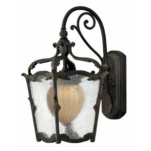 Purchase Melton 1-Light Outdoor Wall Lantern By Astoria Grand