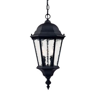 Brook Lane 2-Light Outdoor Hanging Lantern