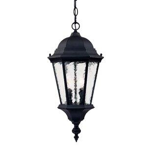 Brook Lane 2-Light Outdoor Hanging Lantern