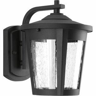 Alcott Hill Duke 1-Light Outdoor Wall Lantern