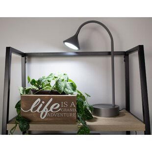 Sabra Gooseneck LED 16 Desk Lamp