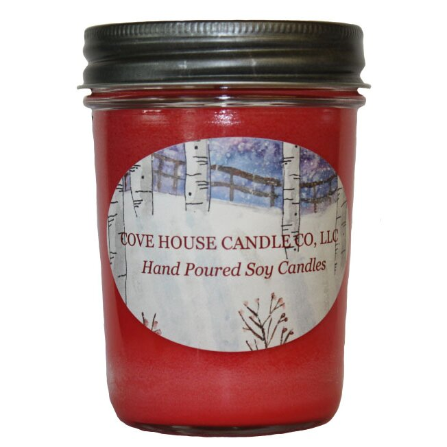Covehousecandleco Red Hot Cinnamon Scented Jar Candle Wayfair