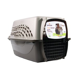 2 Door Top Load Hard-Sided Pet Carrier  sc 1 st  Wayfair & Top Loading Shadow Box | Wayfair Aboutintivar.Com