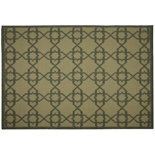 Eduardo Green Geometric Indoor/Outdoor Area Rug