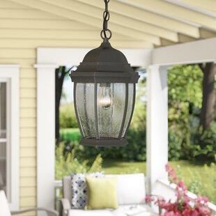 Tomita 1-Light Outdoor Hanging Lantern