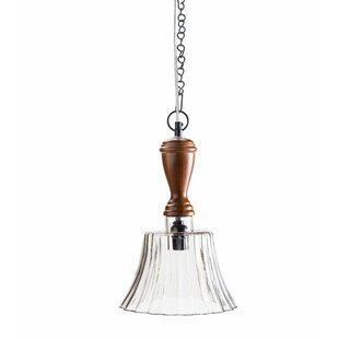 Breakwater Bay Weishaar 1-Light Bell Pendant