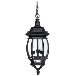 Reviews Herkimer 3-Light Outdoor Hanging Lantern By Alcott Hill