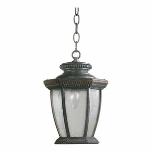 Fleur De Lis Living Winn 1-Light Outdoor Hanging Lantern