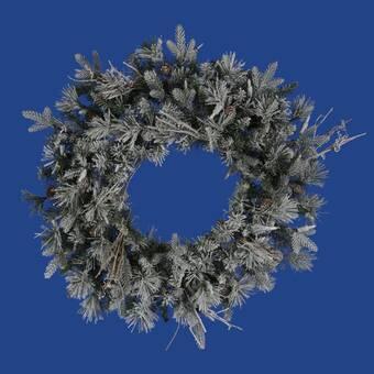 Vickerman Frosted Whistler Fir Christmas Lighted 24 Lighted Pvc Wreath Wayfair