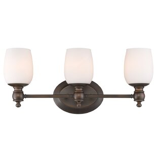 Darby Home Co Armstrong 3-Light Vanity Light