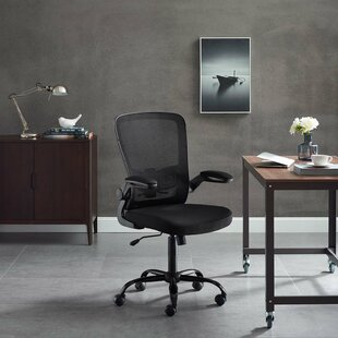 Clary Mesh Task Chair by Symple Stuff New