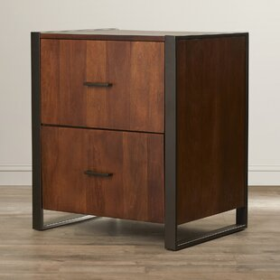 Lexus 2 Drawer Lateral Filing Cabinet by Mistana