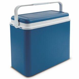 24 L Picnic Cooler By Symple Stuff