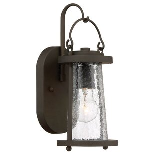 Maribeth 1-Light Outdoor Wall Lantern By Darby Home Co Outdoor Lighting