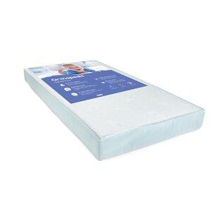 Big Oshi 2-Stage Waterproof Standard Crib Mattress