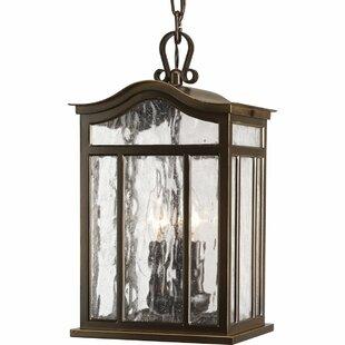 Alcott Hill Triplehorn 3-Light Outdoor Hanging Lantern
