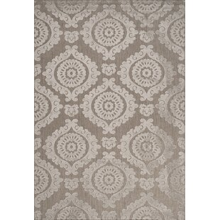 Hughes Brown/Beige Indoor/Outdoor Area Rug