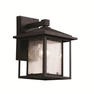 Call 1-Light Outdoor Wall Lantern