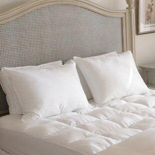 Carpenter Co. Beyond Down Alternative Pillow (Set of 2)
