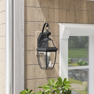 Gustavson 2-Light Outdoor Metal Wall Lantern by Three Posts