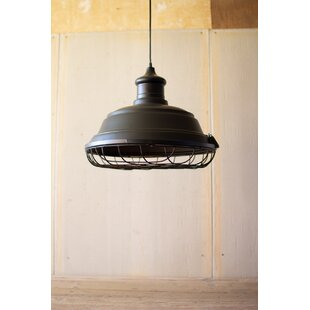 Gracie Oaks Caraway Metal Caged 1-Light Dome Pendant