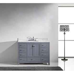 Serigne 47 Single Bathroom Vanity Set with Mirror by Willa Arlo Interiors