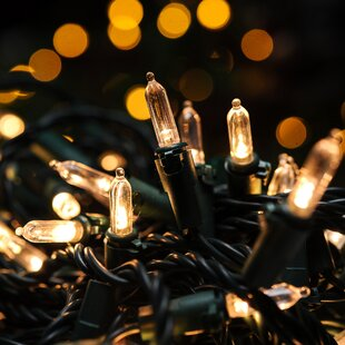 Savings 100 Fairy String Light By Festival Depot