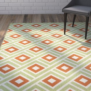Rahul Hand-Woven Green/Rust Indoor/Outdoor Area Rug