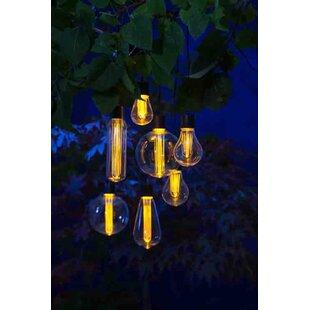 Hymes 7-Light Novelty String Light Image
