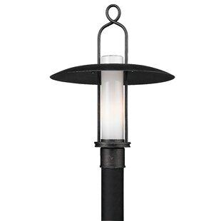 Zavis Outdoor 1-Light Lantern Head by August Grove