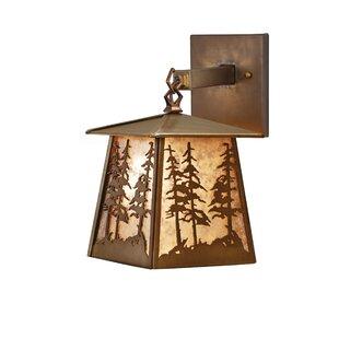 Yair 1-Light Outdoor Wall Lantern By Loon Peak Outdoor Lighting