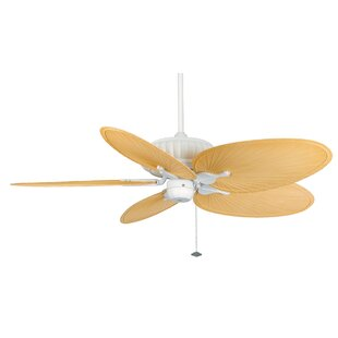 Coupon 15 Belleria 5 Blade Ceiling Fan By Fanimation