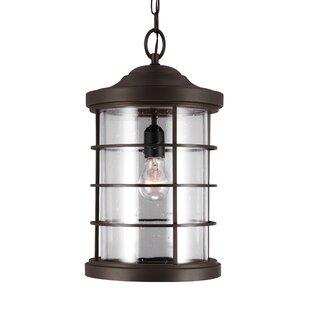 Inexpensive Alanson Outdoor Hanging Lantern By Birch Lane™