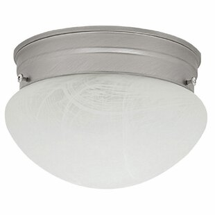 Winston Porter Mackinaw 1-Light Flush Mount