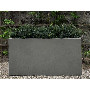 Orren Ellis Pulliam Fiberglass Planter Box