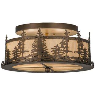 Millwood Pines Evenson 2-Light Outdoor Flush Mount